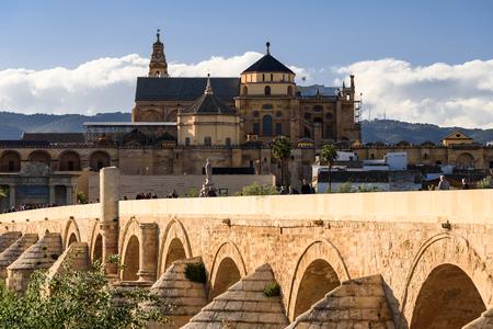 view of the mezquita in cordoba from the roman bridge. spain