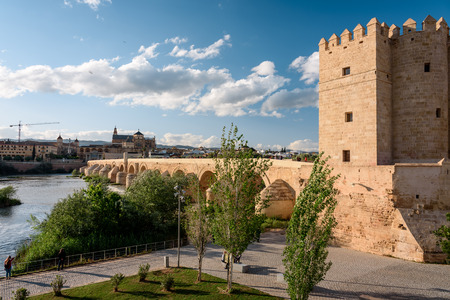 view of the calahorra tower during sunset. corboda spain