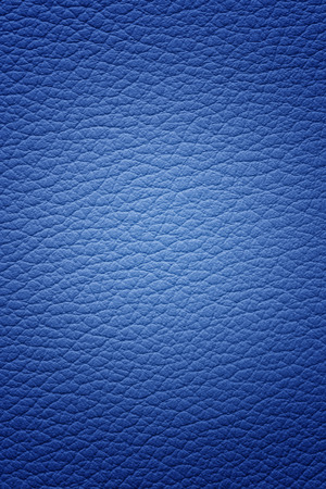 blue leather Imagens
