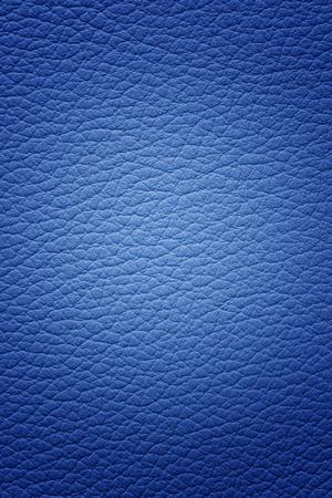 Pelle blu Archivio Fotografico - 32330122