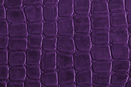 Purple crocodile leather texture
