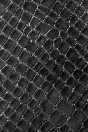 leather texture black background,crocodile leather Stock Photo