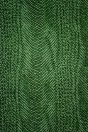 snake texture: snake skin green