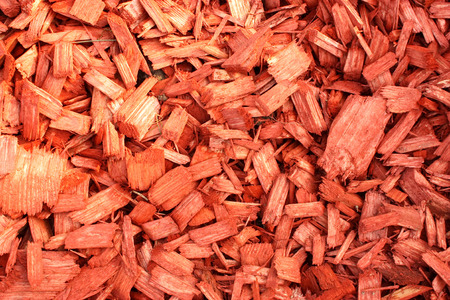wood chip: Wood Chip or garden mulch Stock Photo