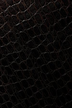 leather pattern: Black crocodile leather pattern