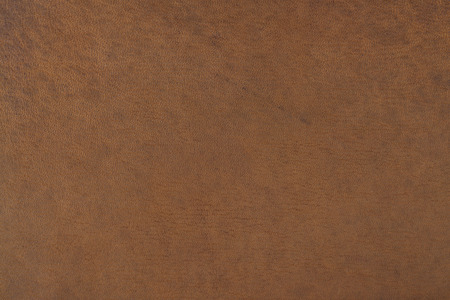color skin brown: leather, brown, background, abstract, accessories, hide, structured, texture, color, cowhide, quality, skin, raw, material, surface, creased, wallpaper, natural, clothes, cloth, luxury, fashion, cow skin, label, coarse, backdrop, cow, empty, leather work,
