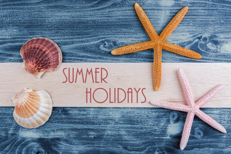 sea shells and starfish on the wooden board Stock Photo