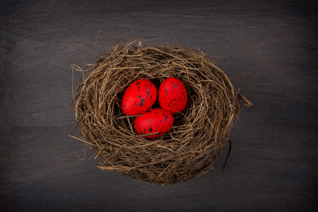 rustic: eggs in nest on rustic wooden background