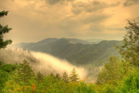 tennessee: Tennessee Smoky Mountains Stock Photo