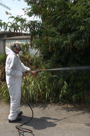 Un tecnhnician de la salud de la empresa de desinsectación, insectos, ratas, virus, etc Foto de archivo - 5542161