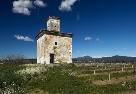 agricultural tools: Paderno (Bs),Franciacorta,Lombardy,Italy,an old cottage for agricultural tools in a vineyard