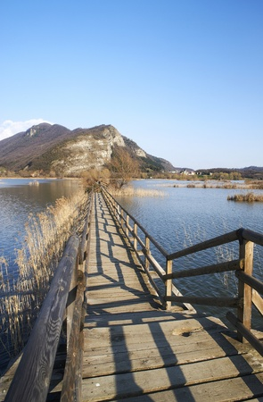bogs: Provaglio (Bs),Franciacorta,Lombardy,Italy,National Reserve of Peat Bogs of lake Iseo Stock Photo