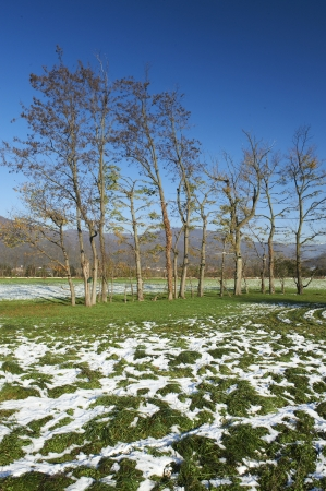 contryside: Rodengo (Bs),Franciacorta,Italy, a view of the contryside  after a light snowfall