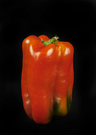 alimony: a red pepper on a black background