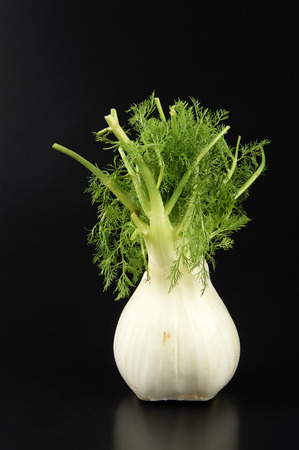 ailment: a oganic fennel on a black background Stock Photo