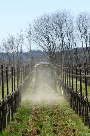 arando: Passirano (Bs), Franciacorta, Italia, el arado de un vi�edo Foto de archivo