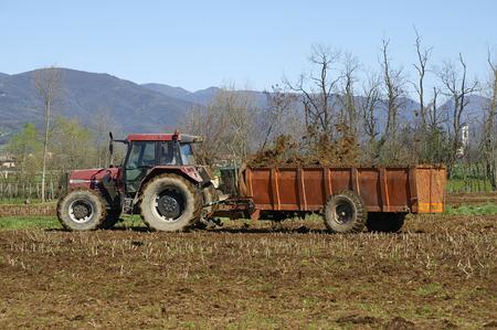 mais: Passirano  (Bs), Franciacorta,concimazione del terreno in un campo di mais a fine marzo