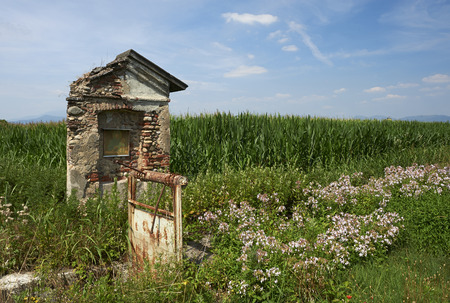 devotions: Castrezzato (Bs), Italy, a small chapel dedicated to Our Lady, on the edge of a corn field Stock Photo