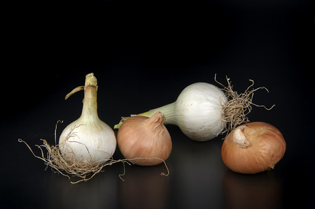 ailment: some biological onions on a black background Stock Photo