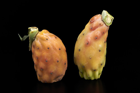 welfare plant: some biological prickly pears on a black background