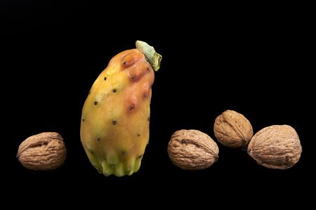 prickly pear: a prickly pear and some walnuts on a black background