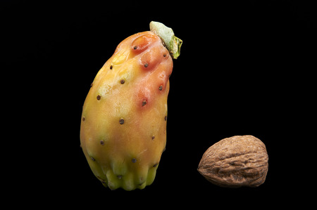 prickly: a prickly pear and a walnut on a black background Stock Photo