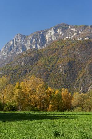 chicharrones: Artogne  (Bs), Valcamonica,Italy,  some  autumn colors Foto de archivo