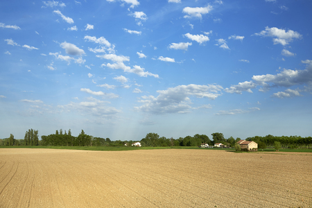 floodplain: Mezzani (Re), Italy, view of the field in the floodplain of the river Po