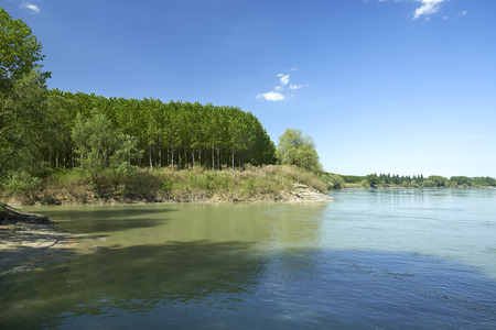 confluence: Mezzani (Re), the confluence of the Parma River with the Po River