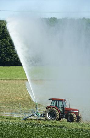 po: Orio Litta (Lo),Italy, artificial irrigation in a field in the flood plain of the river Po Stock Photo