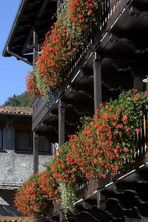 typical: Bienno (Bs),Valcamonica,Italy, some typical flowering balconies