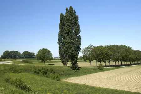 Motta Balufi (Cr), Italia, vista della pianura alluvionale del fiume Po