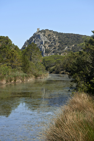 regional: Alberese (Gr), Italy, a natural canal in the Maremma Regional Parkun