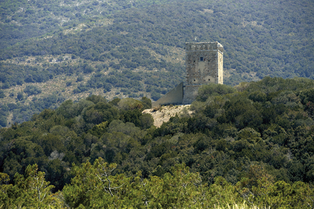 Alberese (Gr), Italy, the Tower Collelungo in the Regional Perk of Maremma