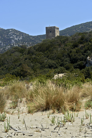 Alberese (Gr), Italy, the Tower Collelungo in the Regional Perk of Maremma  Stok Fotoğraf