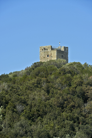 regional: Alberese (Gr), Italy, the tower Castelmarino on the hills of Uccellina in the Regional Park of Maremma