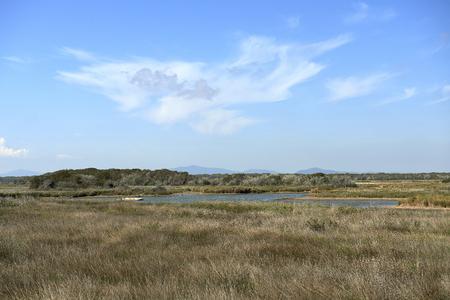 regional: Trappola  (Gr) Italy,  the full reserve area in the Maremma Regional Park