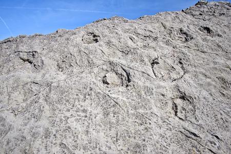 Drò (Tn),Italy,  the Marocche di Drò,210 million years ago,  Lower Jurassic,a rock with various quadruped dinosaur footprints Stock Photo - 99938107