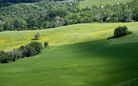 Rossena (Re), italy, a landscape with meadows of Apennines Foto de archivo - 101311308