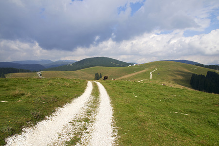 Gallio (Vi),Asiago Plateau,Italy,  the hills with the bicycle path Foto de archivo - 112600228