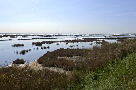 Caposile (Ve),Italy, a view of the venetian lagoon Foto de archivo - 112600288