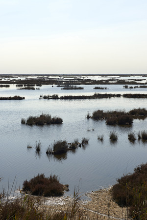 Caposile (Ve),Italy, a view of the venetian lagoon Foto de archivo - 112600290