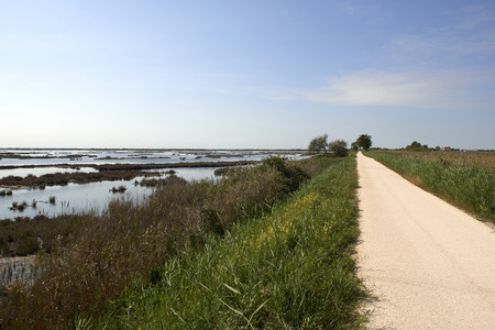 Caposile (Ve),Itathe bicycle lane of the Venetian lagoon Foto de archivo - 112600292