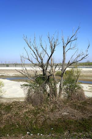 The dry Po river caused the drought, Portiolo (Mn),Italy Foto de archivo - 122847882