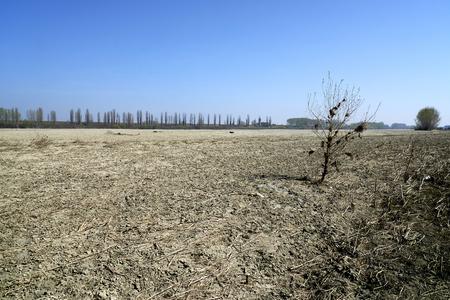 The dry Po river caused the drought, Portiolo (Mn),Italy Foto de archivo - 122848026