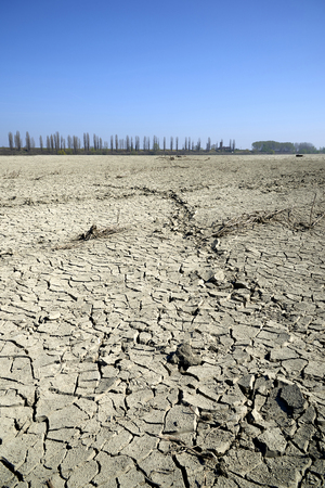 The dry Po river caused the drought, Portiolo (Mn),Italy 免版税图像