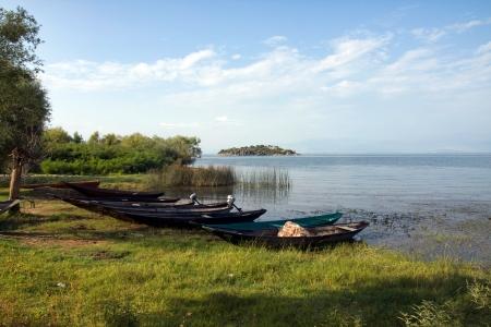 Wooden boats, Skadarsko lake, Montenegro Stock Photo - 13629487