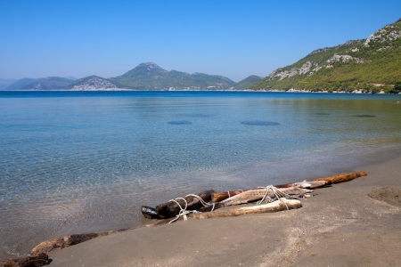 Driftwood on the beach near Dubrovnik, Croatia Stock Photo