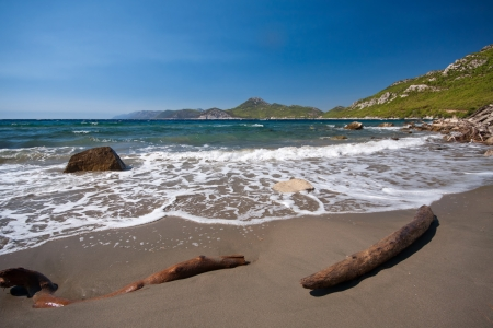 Driftwood and stone on sandy beach near Dubrovnik, Croatia