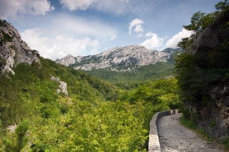 grassfield: Footpath on mountain, Velebit, Croatia